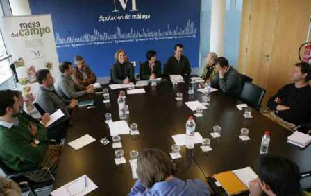 La provincia de m laga concentra el 40 de las empresas - Empresa jardineria malaga ...