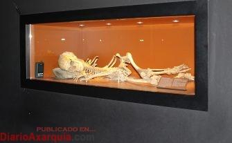esqueleto-epipaleolitico-11-octubre1