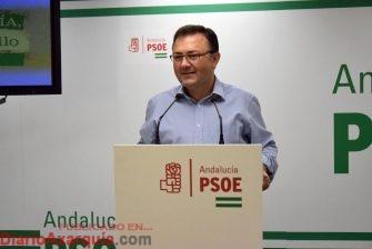 El PSOE muestra su preocupación por el aumento de mujeres que sufren riesgo de malos tratos y por el crecimiento de las denuncias en Málaga, el doble de la media nacional