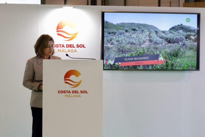 La I Ruta de Olivos Milenarios de Periana se presenta en Fitur como un destino oleoturístico esencial.