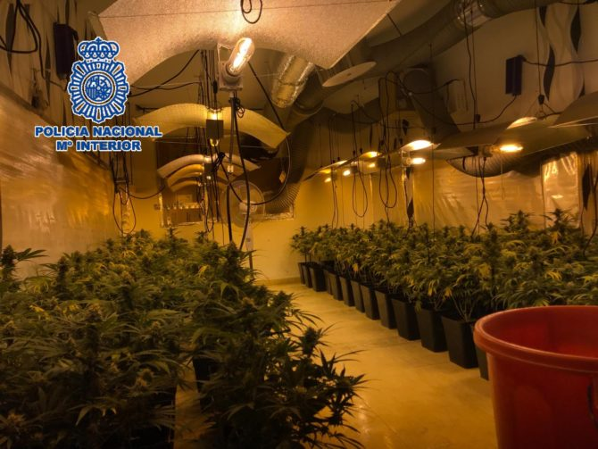 La Policía Nacional desmantela cuatro laboratorios de marihuana en dos viviendas de Vélez-Málaga y detiene a una pareja
