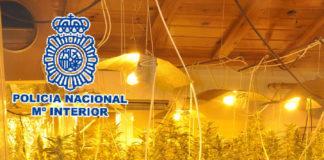 Hay un detenido, un hombre de 33 años y nacionalidad española, por su presunta responsabilidad en los delitos de tráfico de drogas, tenencia ilícita de armas y contra la administración de justicia .