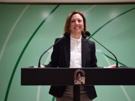 La delegada del Gobierno andaluz, Patricia Navarro.