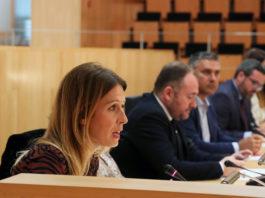 La portavoz del PSOE en la Diputación de Málaga, Antonia García.