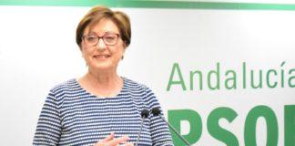 La senadora socialista Marisa Bustinduy.