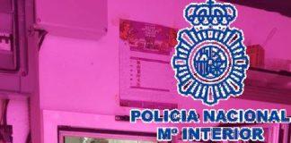 Los investigadores han detenido al responsable del invernadero -un hombre de 25 años y nacionalidad argentina.