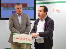 Ruiz Espejo espera que el Gobierno andaluz acepte la enmienda del PSOE de 100.000 euros para iniciar esta infraestructura sanitaria.