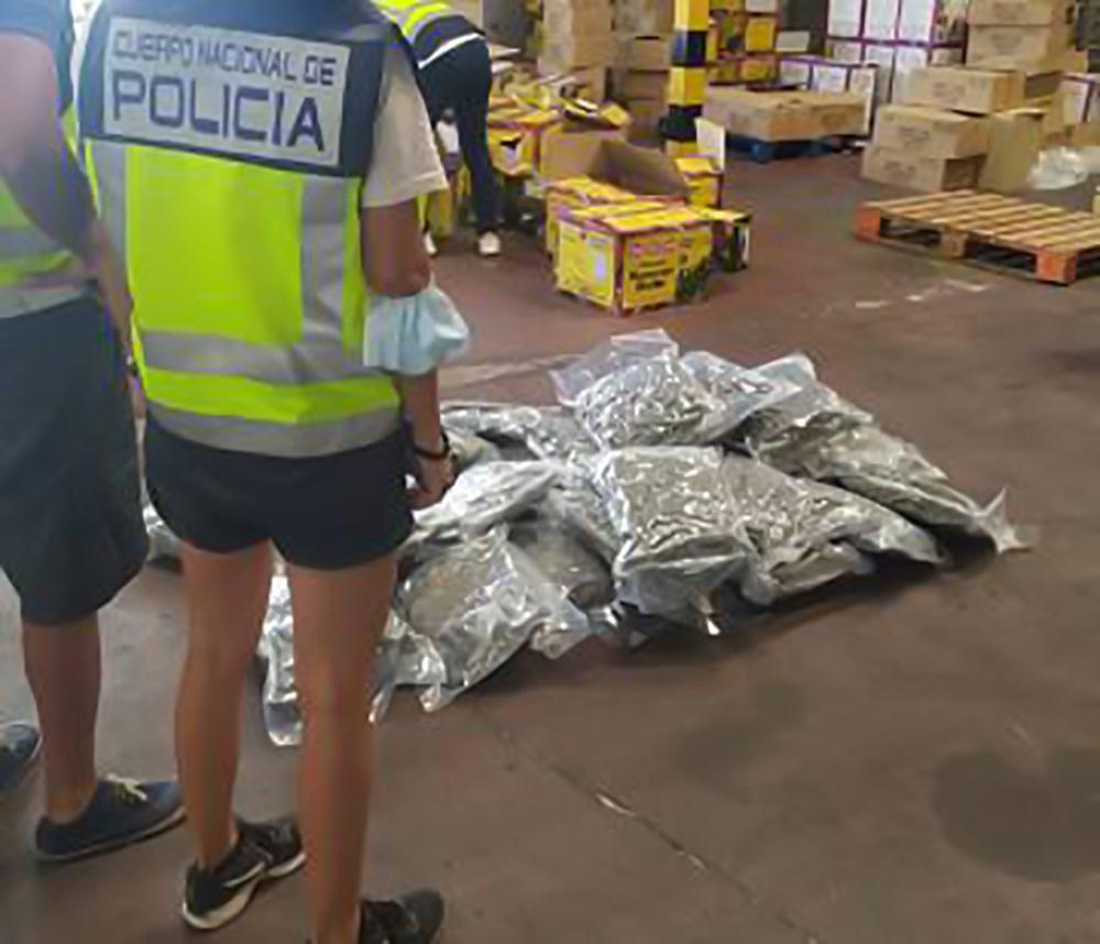  Los miembros realizaban viajes frecuentes desde su base en Ámsterdam a Málaga y Alicante con el fin de coordinar los envíos con la mercancía, que era transportada en camiones de gran tonelaje.