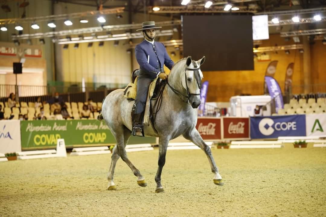 La 30 edición del Salón Internacional del Caballo ha estado dedicada exclusivamente a actividades ecuestres, que durante dos semanas han congregado a 335 caballos de Pura Raza Española