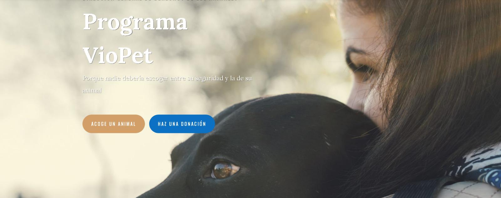 El 30% de mujeres víctimas de violencia machista tienen animales de compañía.