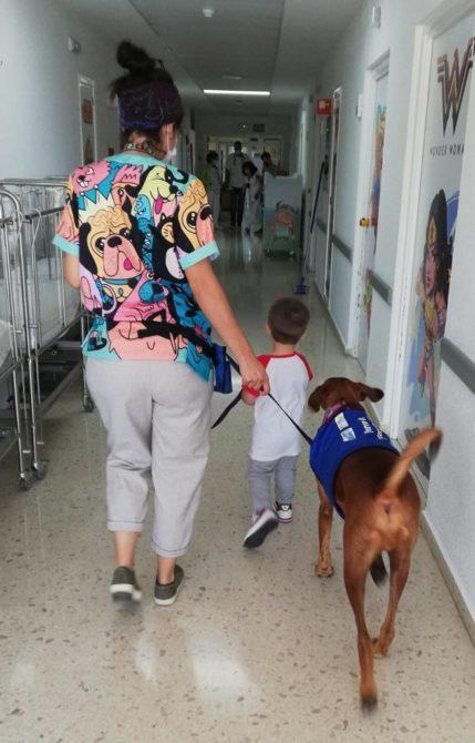 Los perros de 'Huellas en el Corazón' vuelven al Hospital de la Axarquía