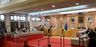 Vélez-Málaga aprueba la nueva ordenanza de bienestar animal y la aplicación del método CER.