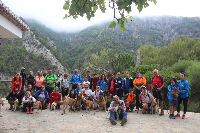 Ruta con ambiente montañero con perros en Alcaucín (Málaga)